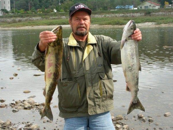 Рыбалка по-корейски