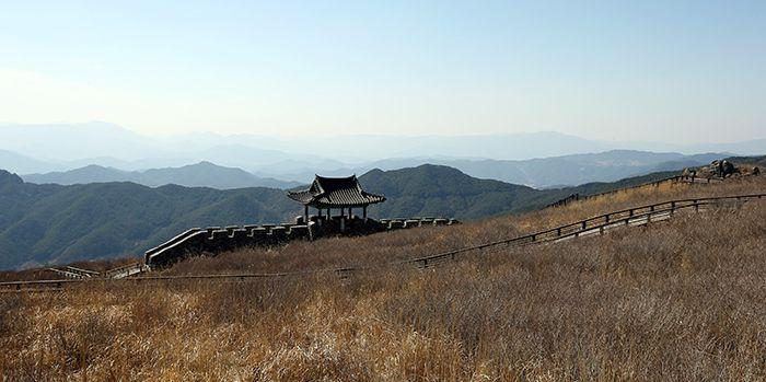 Крепостная стена и дозорная вышка на травянистом холме.